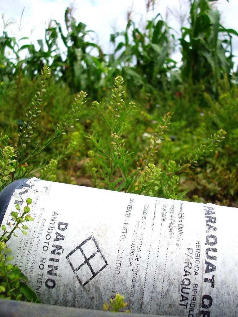herbicide paraquat